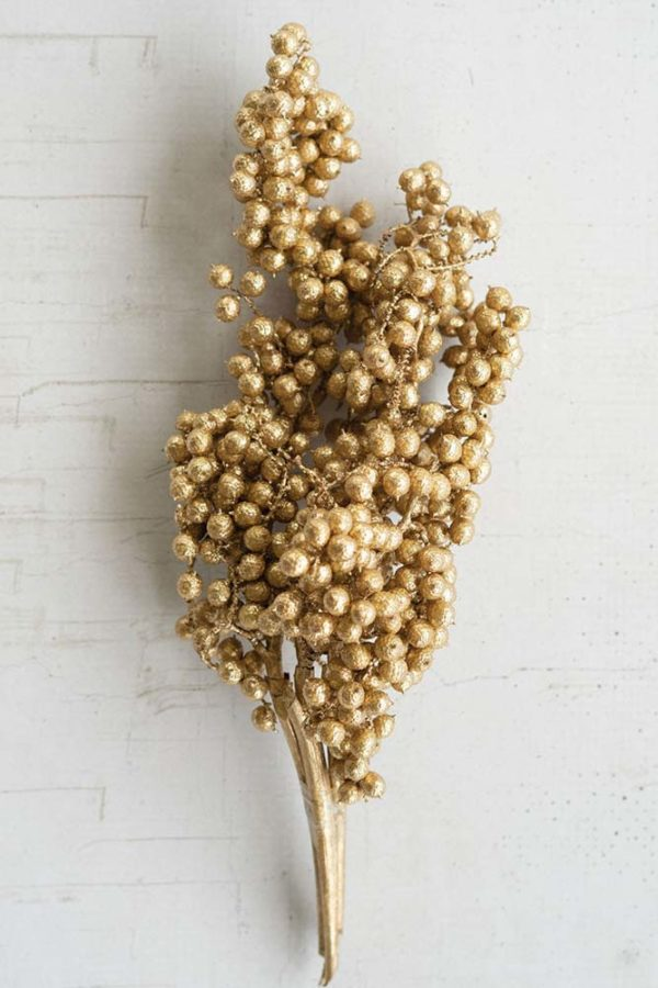 Great-Finds-Parker-Products-Kalalou-bundle-of-washed-gold-canella-berry-stems