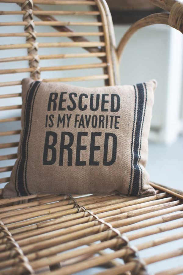 Great-Finds-Parker-Products-Kalalou-pillow-rescued