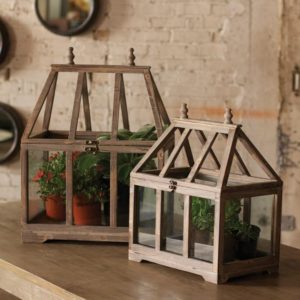 Great-Finds-Parker-Products-Kalalou-set-of-2-wood-and-glass-terrariums